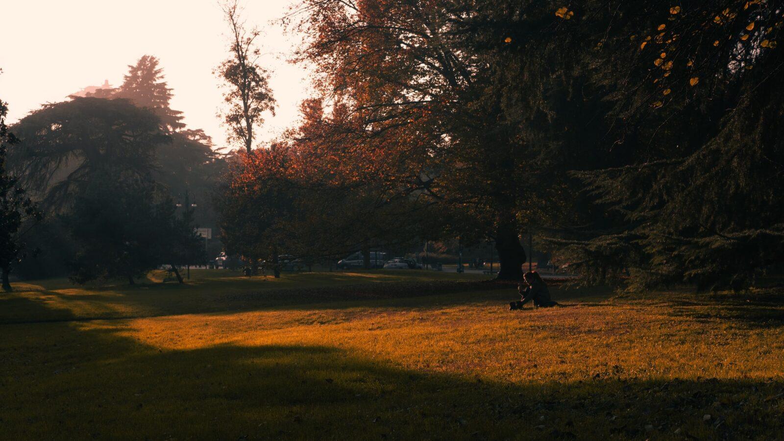 Quiet Parks International